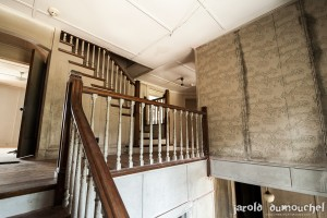 The Ogilvie widow's abandoned mansion