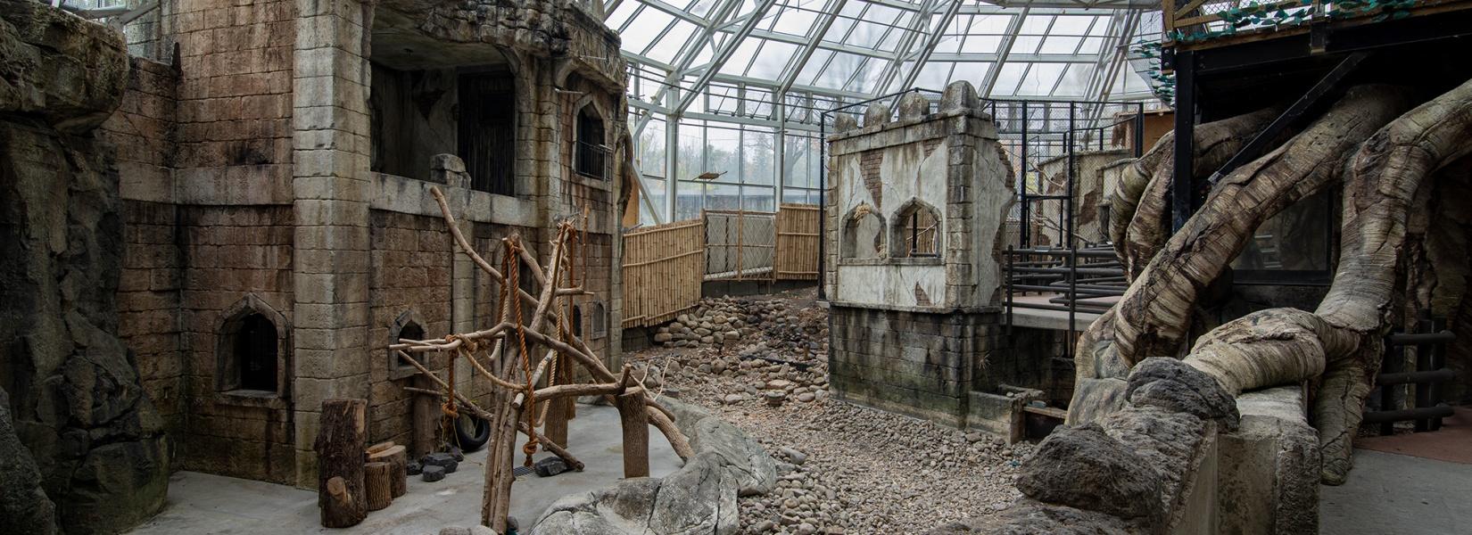 Le zoo abandonné